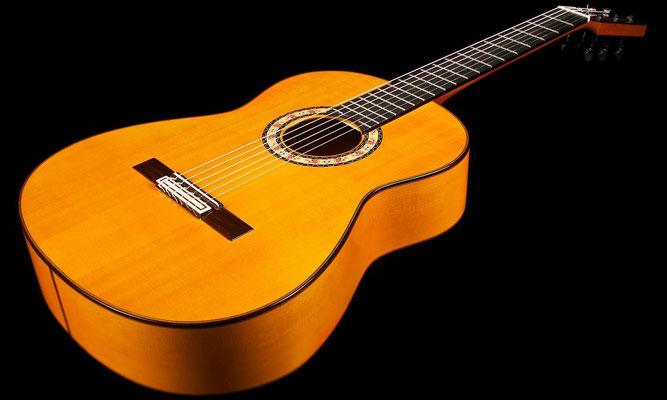 Felipe Conde 2012 - Guitar 8 - Photo 8