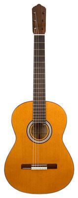 Lester Devoe 2011 - Guitar 2 - Photo 4