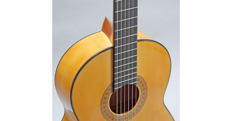 Francisco Barba 2011 - Guitar 1 - Photo 6