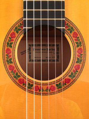 Francisco Barba 2017 - Guitar 1 - Photo 1