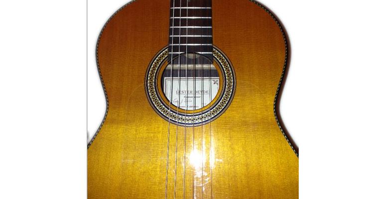 Lester Devoe 2013 - Guitar 1 - Photo 11