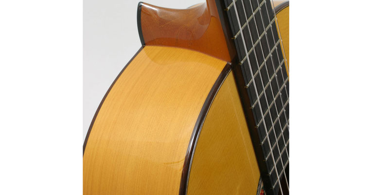 Lester Devoe 2009 - Guitar 3 - Photo 6