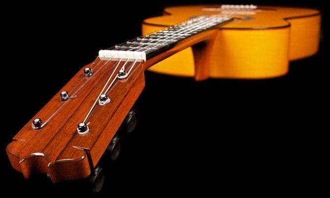 Felipe Conde 2014 - Guitar 6 - Photo 11
