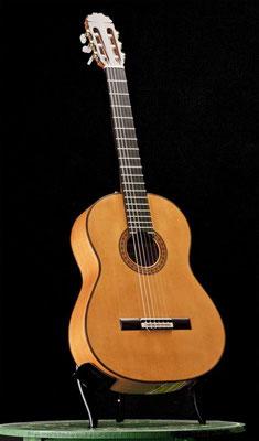 Manuel Reyes Hijo 2010 - Guitar 2 - Photo 7