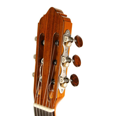 Lester Devoe 2018 - Guitar 1 - Photo 8