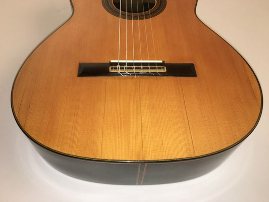 Santos Hernandez 1926 - Guitar 1 - Photo 11