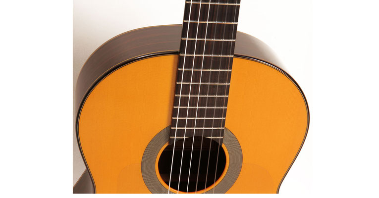 Lester Devoe 2012 - Guitar 2 - Photo 6