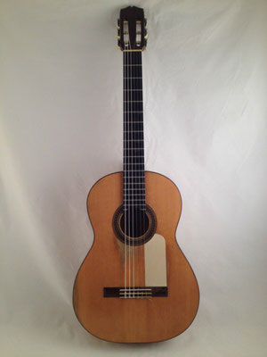 Santos Hernandez 1930 - Guitar 1 - Photo 21