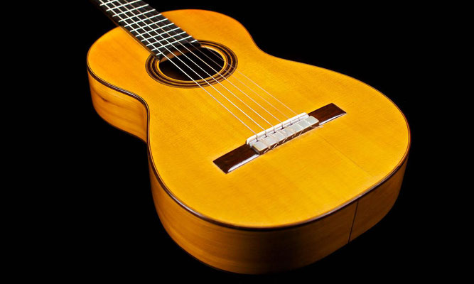 Antonio de Torres 1886 - Guitar 1 - Photo 7