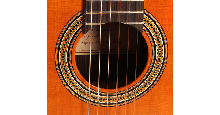 Lester Devoe 2013 - Guitar 1 - Photo 7
