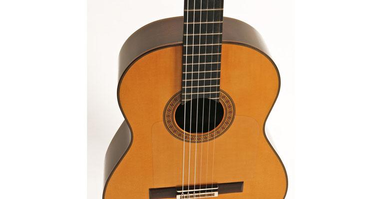 Manuel Reyes Hijo 2010 - Guitar 1 - Photo 7