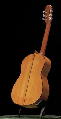 Manuel Reyes Hijo 2010 - Guitar 2 - Photo 1