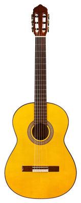 Lester Devoe 2011 - Guitar 1 - Photo 9