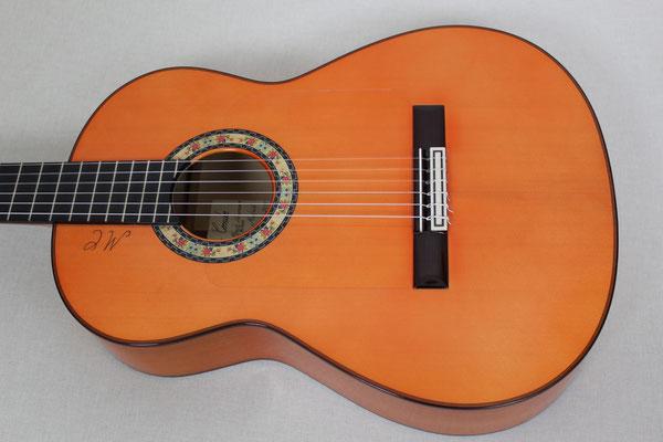 Felipe Conde 2014 - Guitar 7 - Photo 9