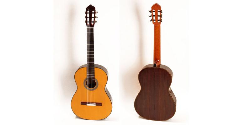 Lester Devoe 2012 - Guitar 2 - Photo 2