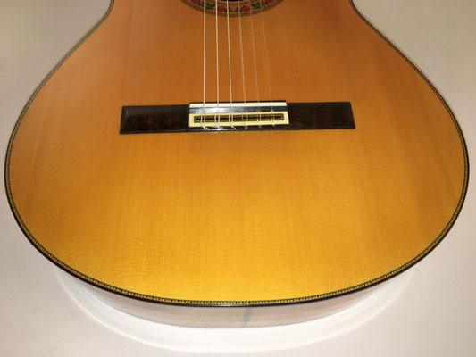 Francisco Barba 2016 - Guitar 1 - Photo 24
