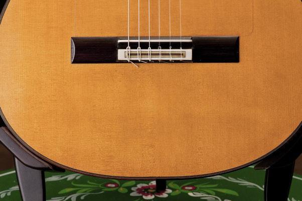 Manuel Reyes Hijo 2010 - Guitar 2 - Photo 2