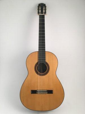 Santos Hernandez 1926 - Guitar 1 - Photo 1