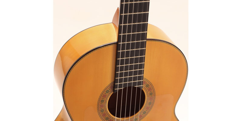 Francisco Barba 2012 - Guitar 1 - Photo 6