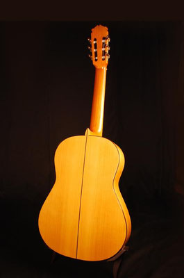 Francisco Barba 2007 - Guitar 1 - Photo 1