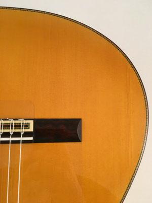 Francisco Barba 2016 - Guitar 1 - Photo 20