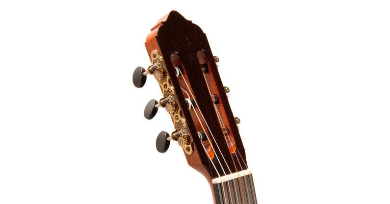 Lester Devoe 2013 - Guitar 1 - Photo 5