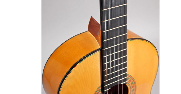 Francisco Barba 2011 - Guitar 2 - Photo 7