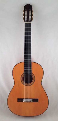 Manuel Reyes 1994 - Guitar 2 - Photo 17