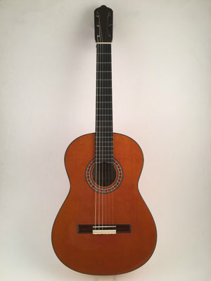 Lester Devoe 2012 - Guitar 4 - Photo 11