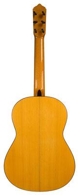 Lester Devoe 2011 - Guitar 2 - Photo 2