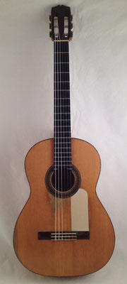 Santos Hernandez 1930 - Guitar 1 - Photo 22