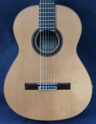 Antonio Marin Montero 2011 - Guitar 3 - Photo 8