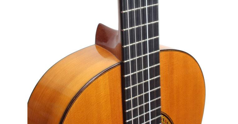 Marcelo Barbero 1949 - Guitar 1 - Photo 1