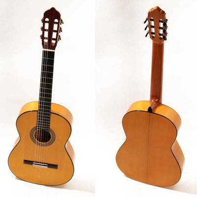 Lester Devoe 2010 - Guitar 3 - Photo 7