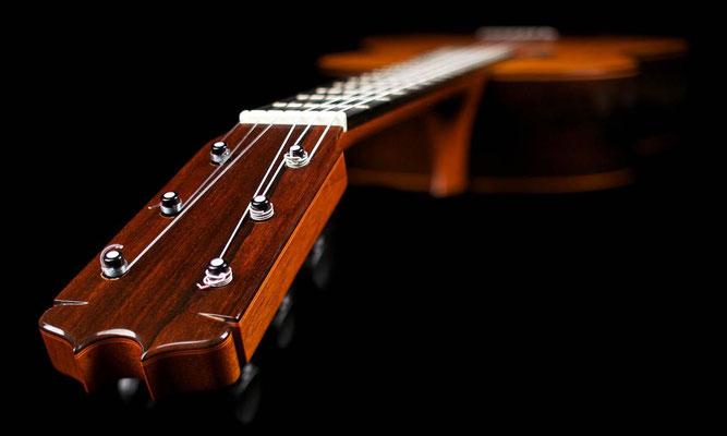 Felipe Conde 2015 - Guitar 6 - Photo 6