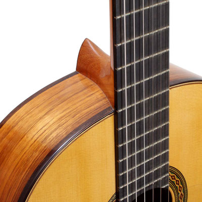 Jesus Bellido 2010 - Guitar 1 - Photo 6