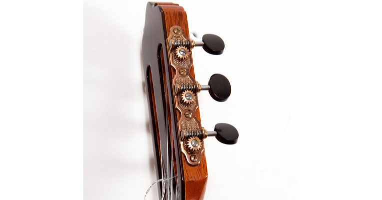 Lester Devoe 2013 - Guitar 2 - Photo 8
