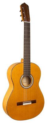 Lester Devoe 2011 - Guitar 2 - Photo 3