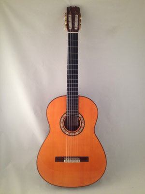 Felipe Conde 2010 - Guitar 2 - Photo 19
