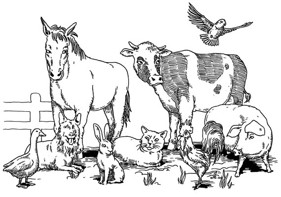 DER ULLO-LÖWE Kinderbuch Illustration 2012