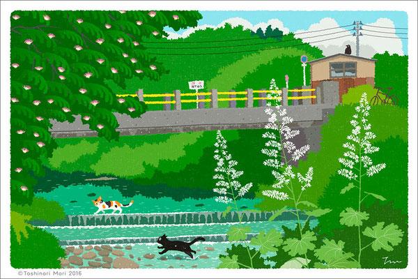 たびねこイラスト-19 夏の川を渡る