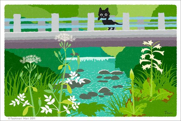 たびねこイラスト-7 橋の下で咲く
