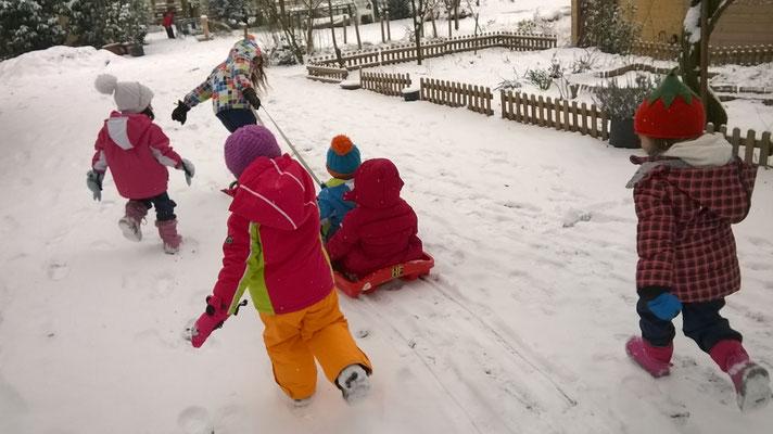 Inverno gioco libero