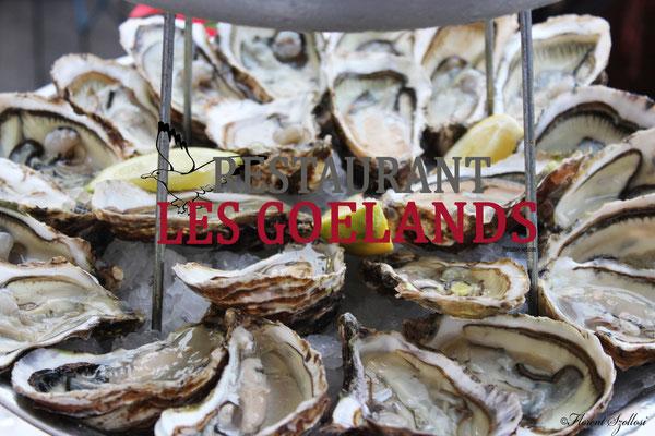 Huîtres de Bouzigues, bassin de thau