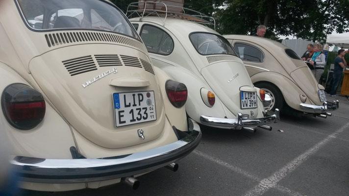 ... Käfer, Käfer...