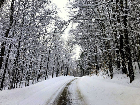 La ''Long Pond Road'' et l'abondance de neige