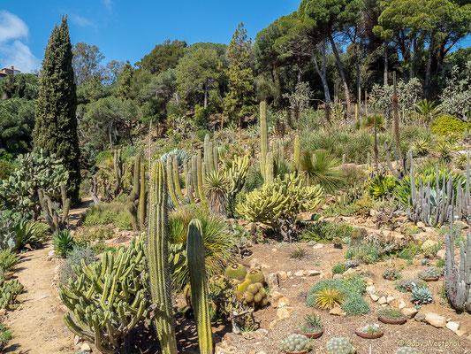 Botanischer Garten Marimurta in Blanes