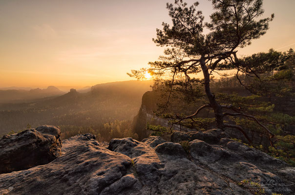 """Golden Morning"" - View from the ""Kleiner Winterberg"" to the ""Gleitmannshorn"" in Saxon Switzerland, Germany"