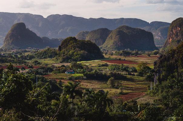 Tabaco valley - Vinales, Cuba