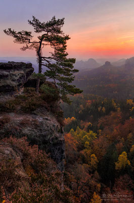 """Colorful Nature"" - View from the ""Kleiner Winterberg"" to the ""Gleitmannshorn"" in Saxon Switzerland, Germany"